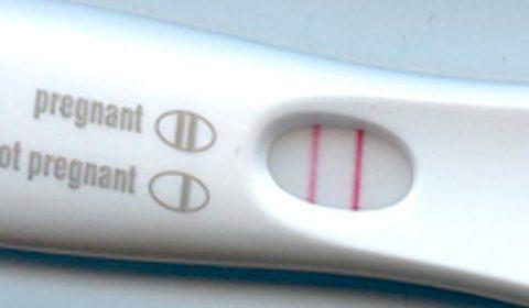 El embarazo paso a paso: 0 a 8 semanas