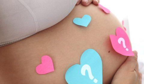 El embarazo paso a paso: 37 a 40 semanas